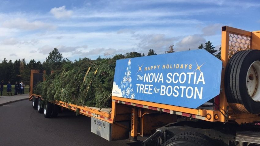 Live blog: Boston's 2016 Christmas tree arrives after its ...